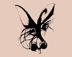 La Tragédie de l'âne (Catherine Gil Alcala)
