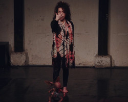 Miroir 1 extrait de Zoartoïste (Catherine Gil Alcala)